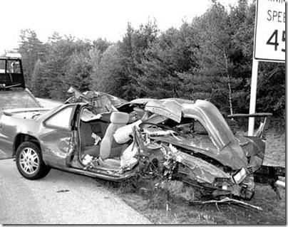 moose-accident-speed-kills